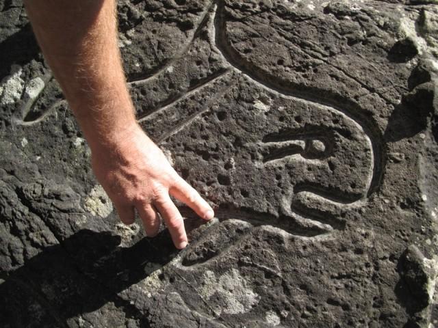 coastal_orca_petroglyph