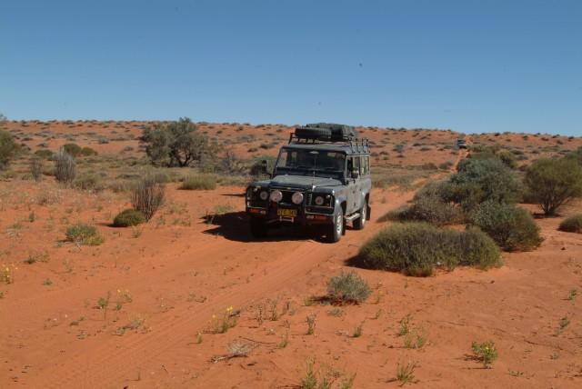04-Old shot lines in Simpson Desert allow easier access