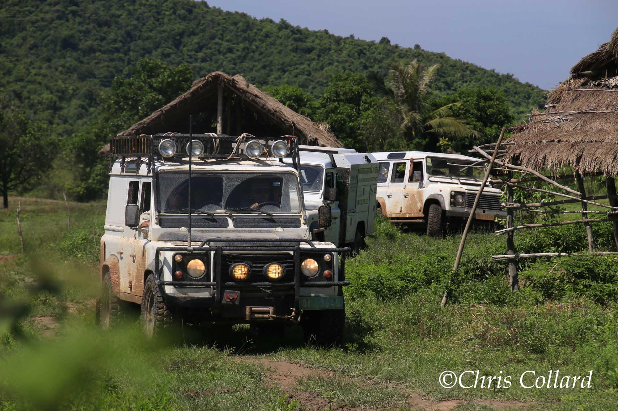 2015 Collard -  Cambodia 002