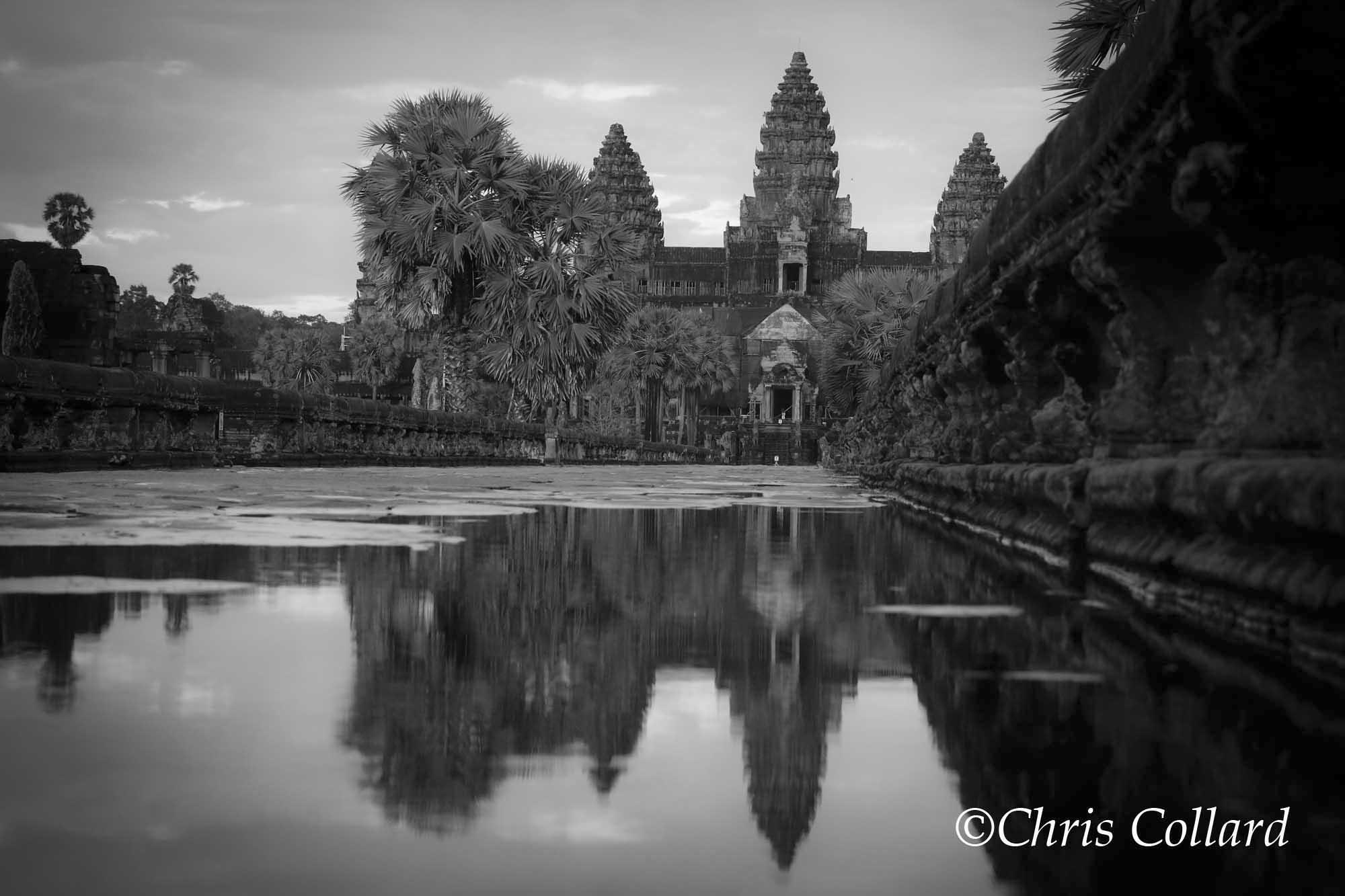 2015 Collard -  Cambodia 003