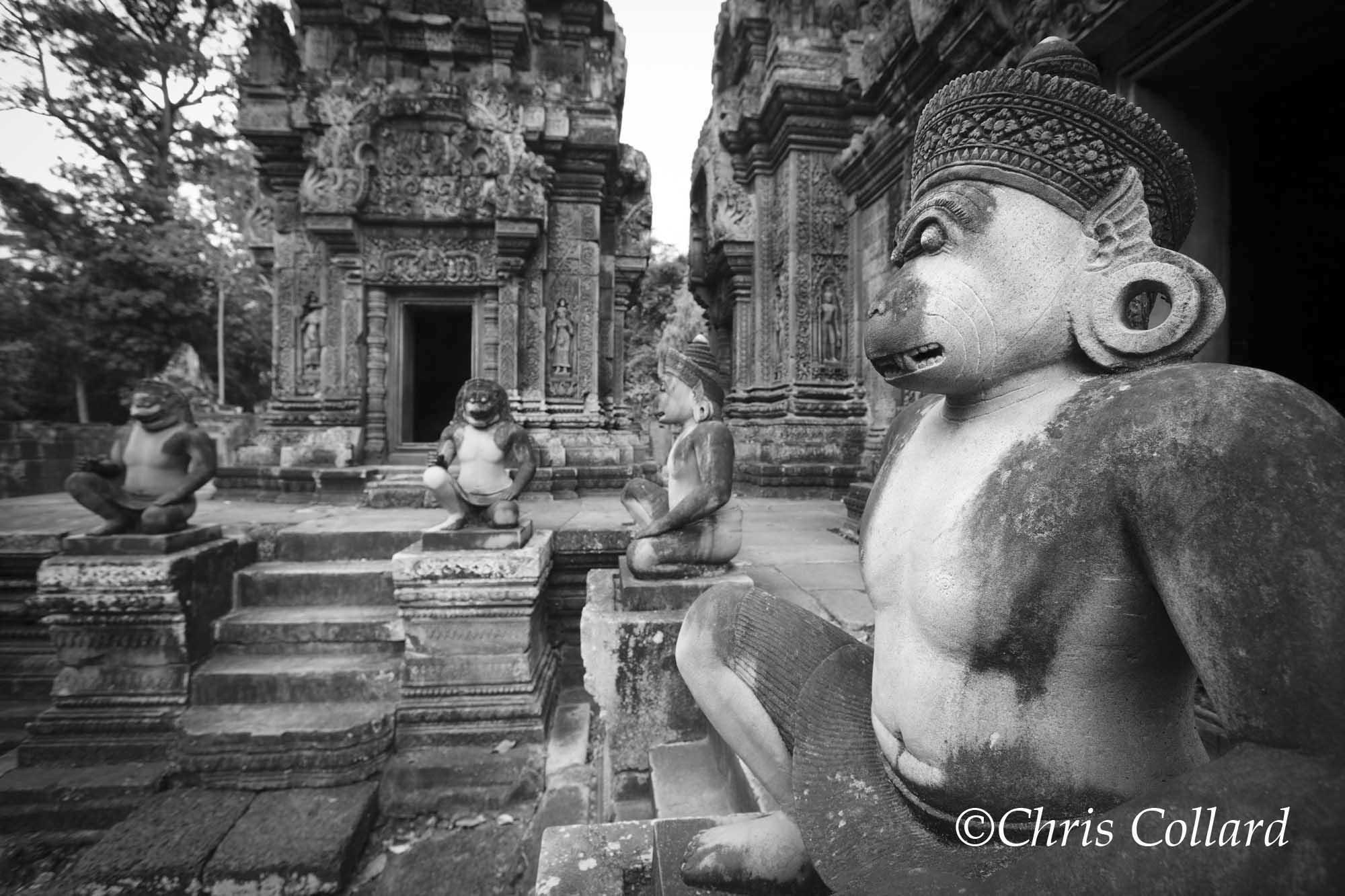 2015 Collard -  Cambodia 004