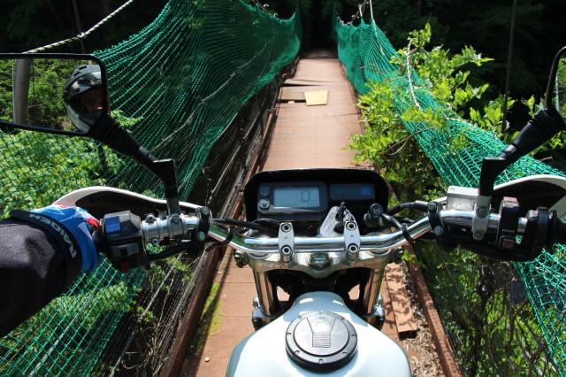 Precarious Crossing