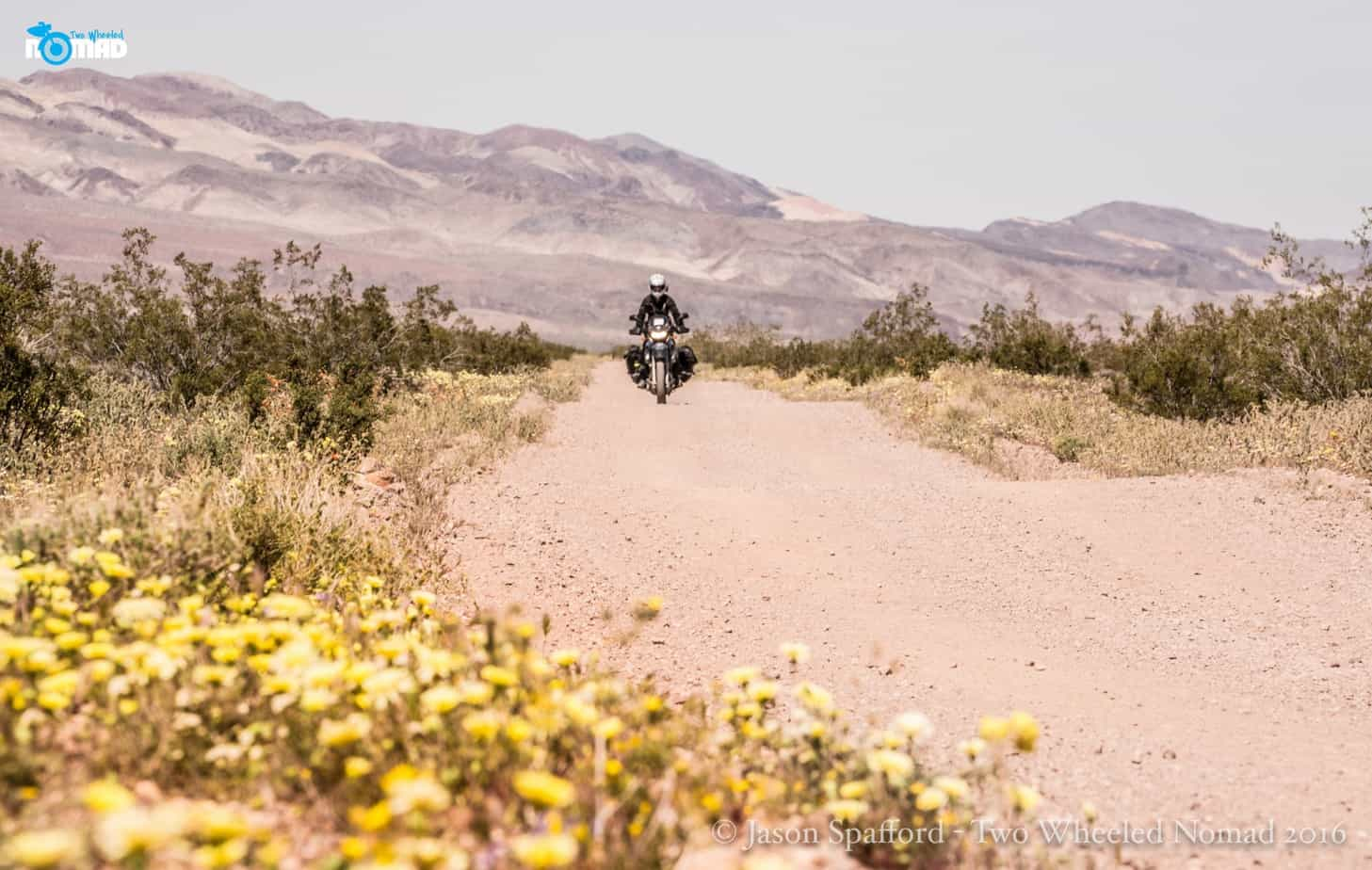 Lisa Morris_Death Valley_ExPo14