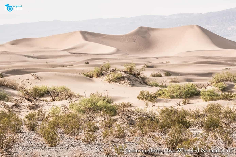 Lisa Morris_Death Valley_ExPo19