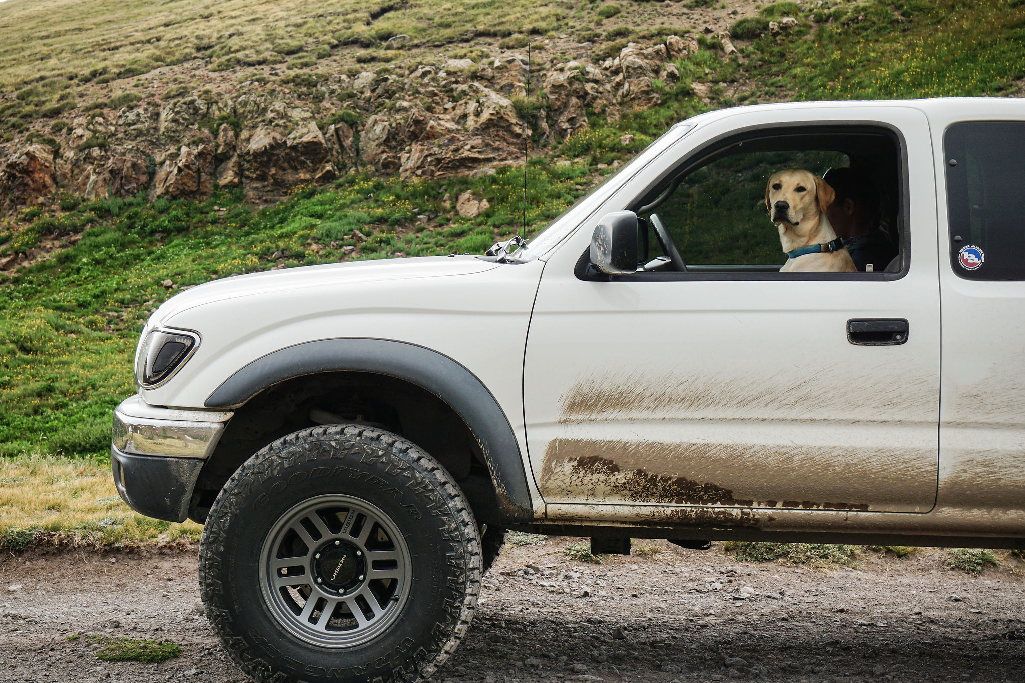 4-PAW Drive - this truck has that