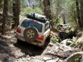 Chiricahua Mountains Expedition