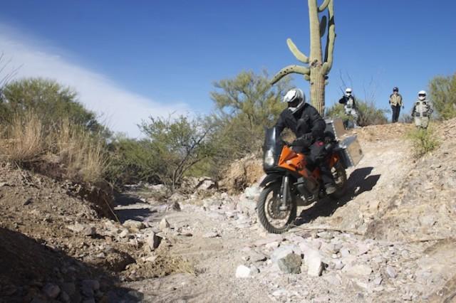 KTM_Desert