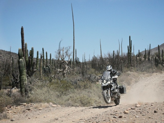 Baja_Moto10