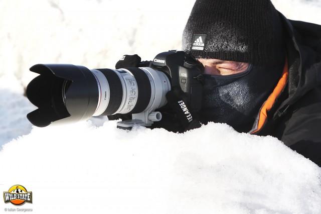 iarna-extrema-la-corbu-04