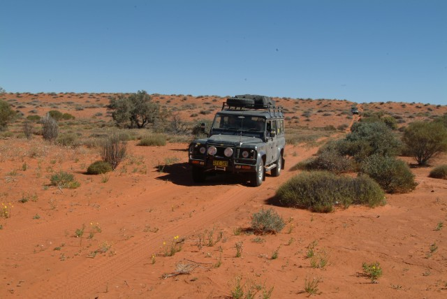 04-Old shot lines in Simpson Desert allow easier access