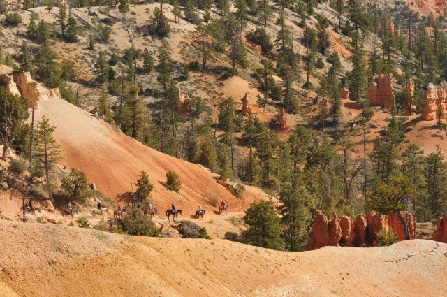 B2-Horse riders enter Bryce Canyon