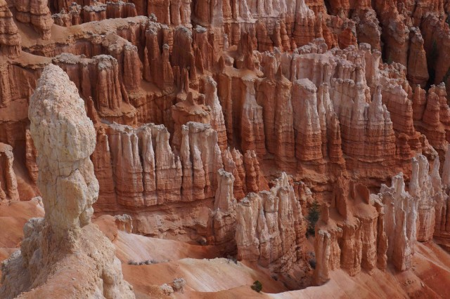 B3-The tortured landscape of Bryce canyon is made up of thousands of Hoodoos, or eroded rock towers