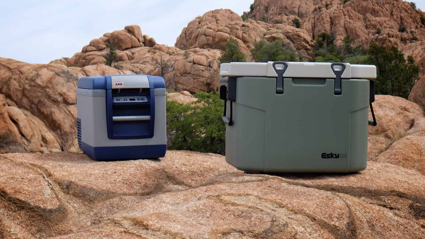 Head to Head: Refrigerator or cooler