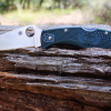 Field Tested: Spyderco Endura 4