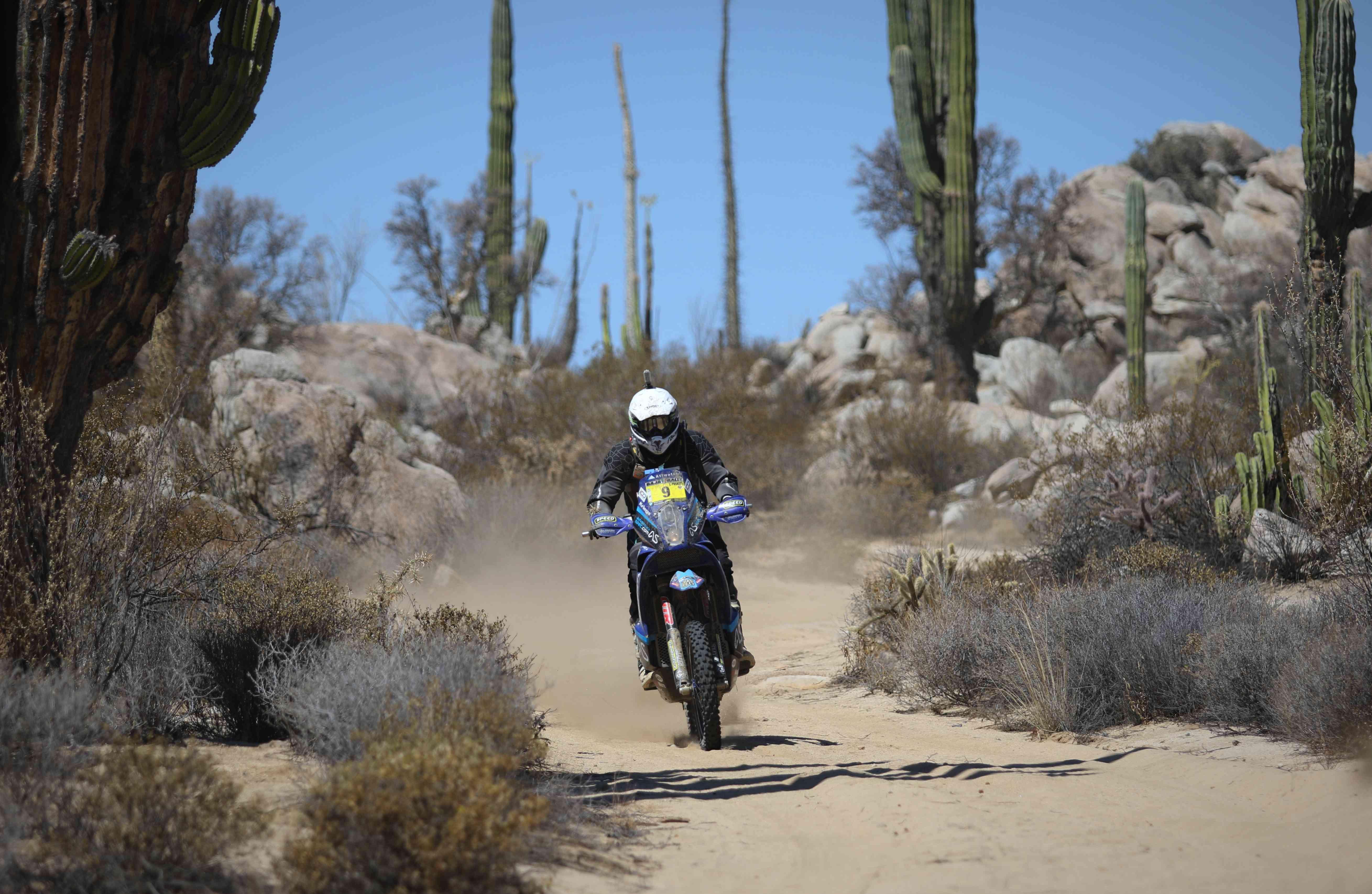 Baja Rally - SECONDS (55)