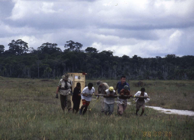 pulling the piano_ Guyana