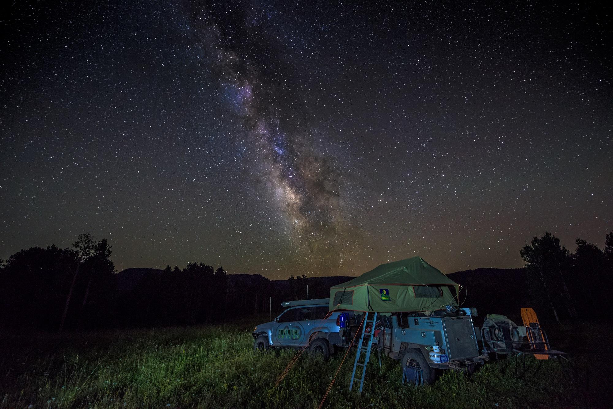 Lexy Turtleback STARS-1