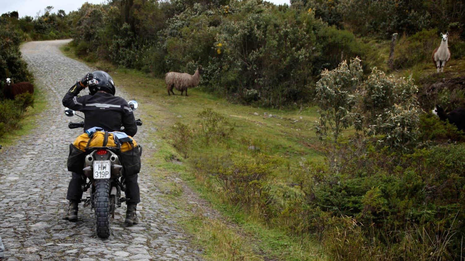 New Adventure Rider: Selecting a Motorcycle Suit