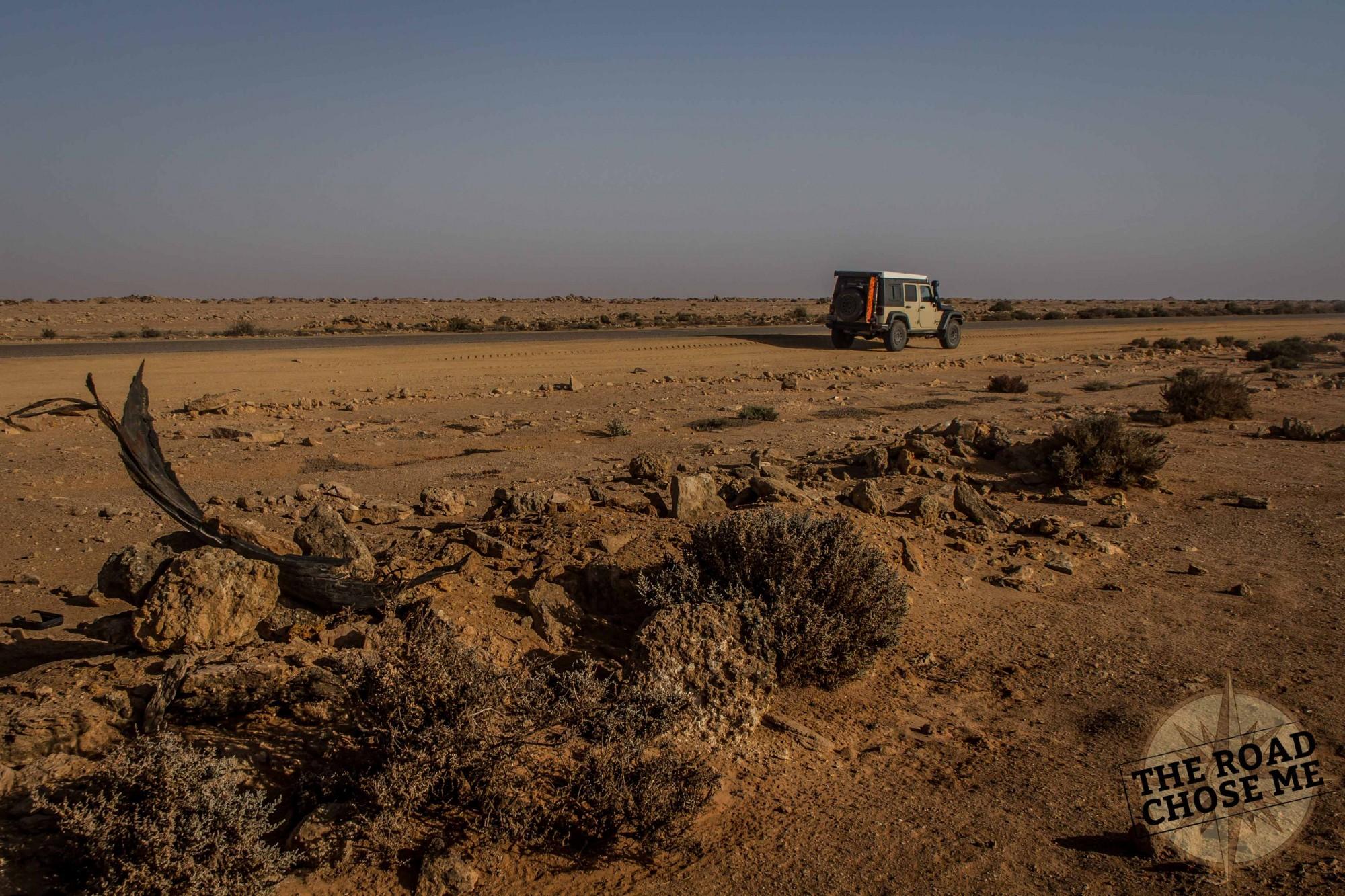 africa-jk-western-sahara