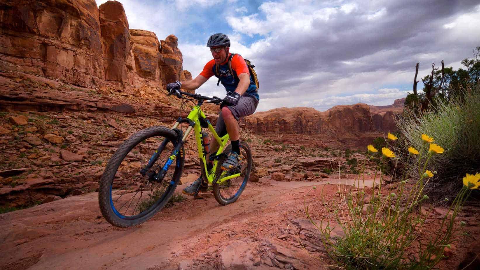 The Widening World of Mountain Bike Wheels