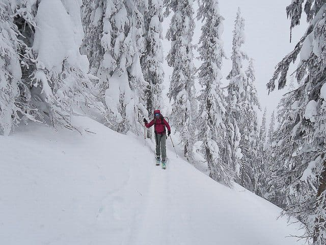 h ski touring in nelson photo dave sears