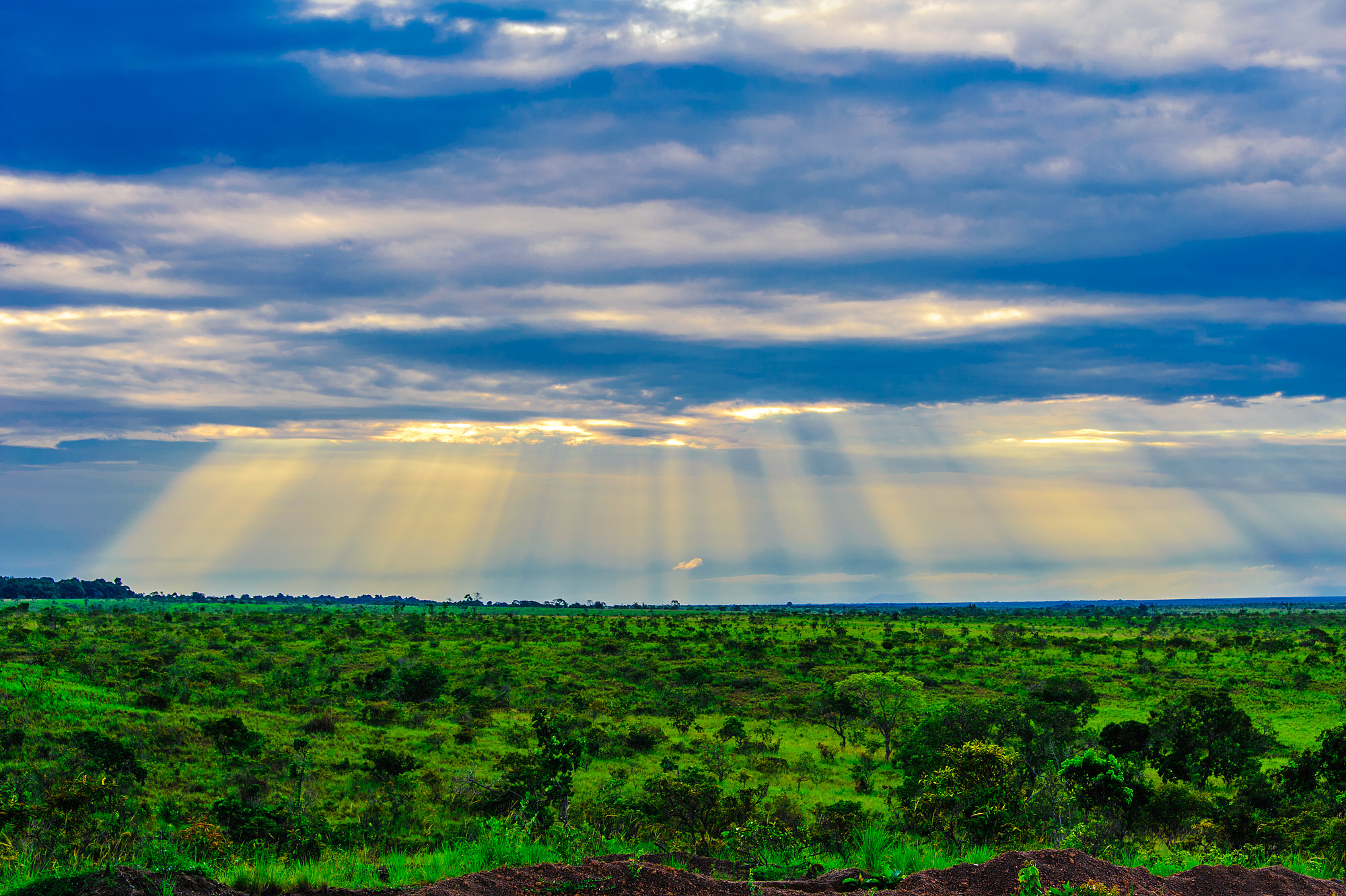 The Beauty of the Rupununi Savannah - Expedition Portal
