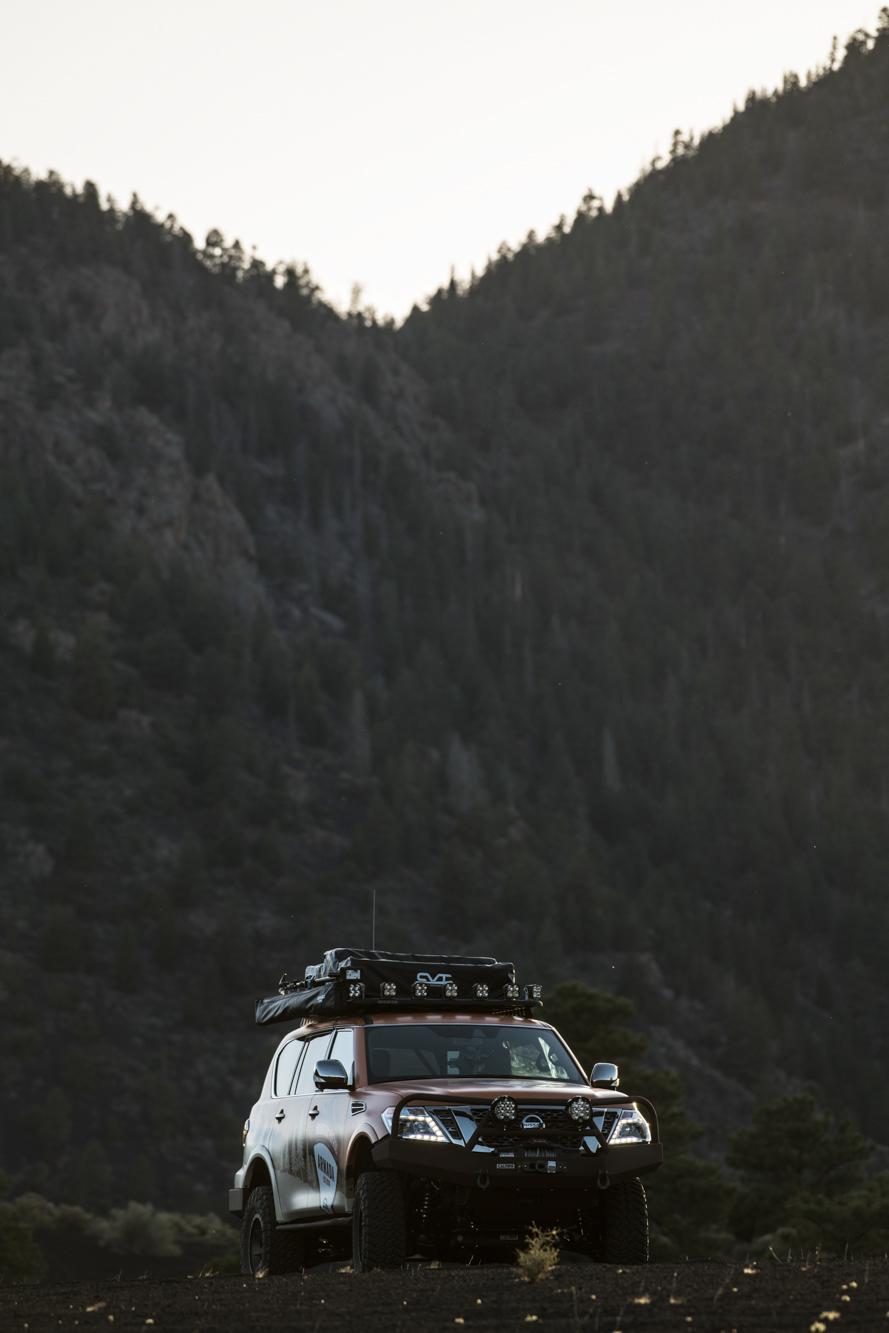 Armada-Mountain-Patrol-tree-background.j