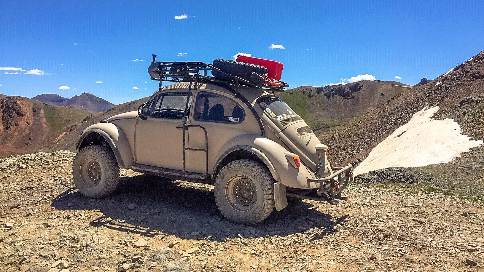 El Burro: The Overland Bug