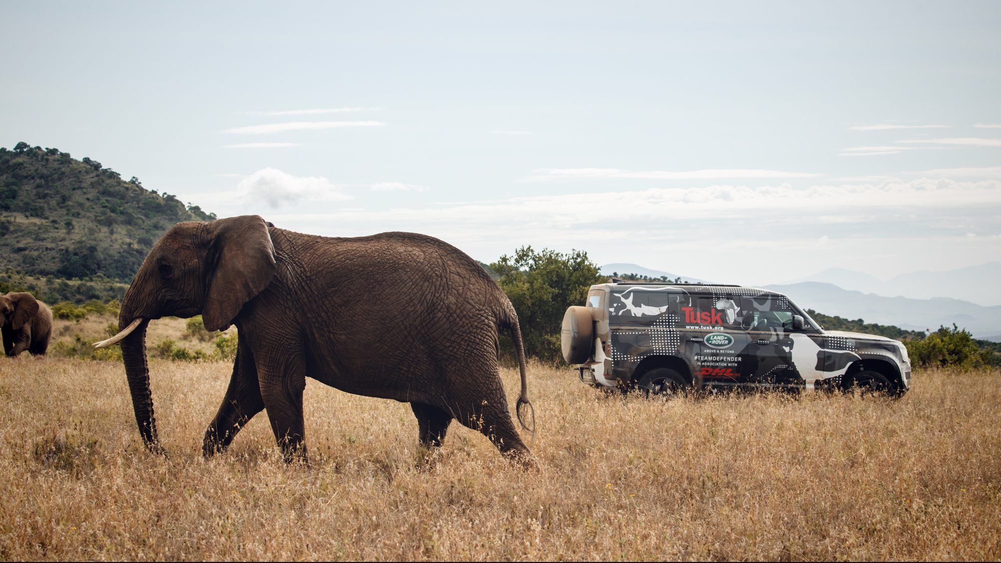 Land Rover's 2020 Defender, and The Elephant in The Room