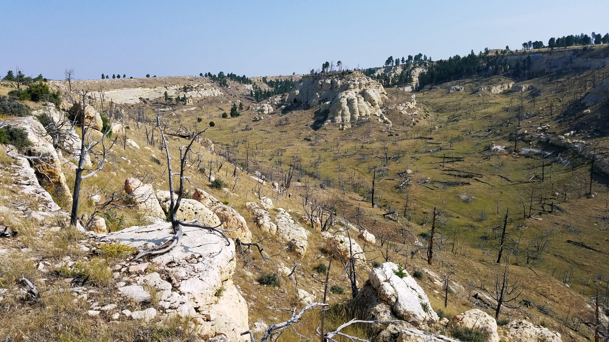 highlights along wyoming backcountry discovery route