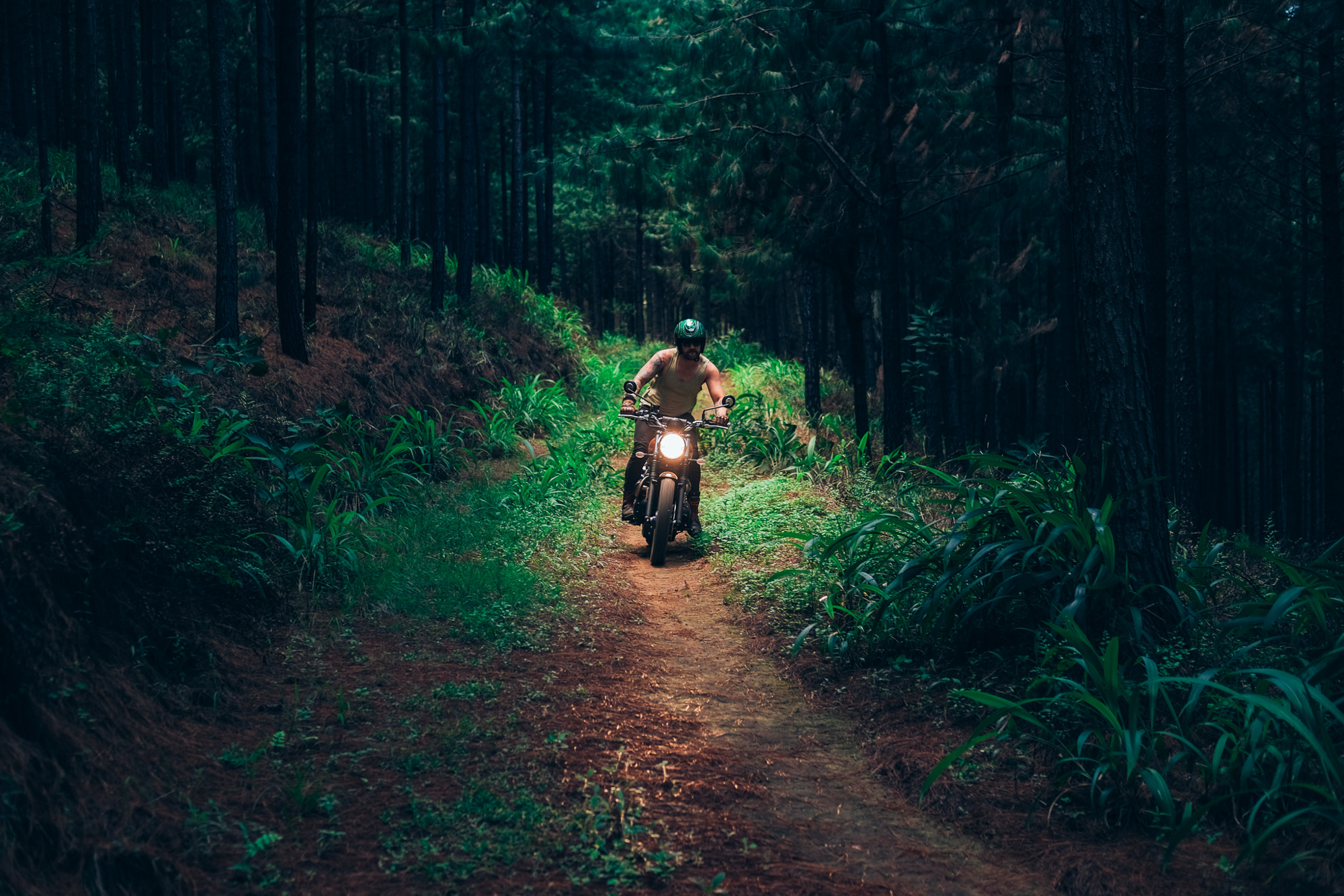 sabie bubble run forest ride