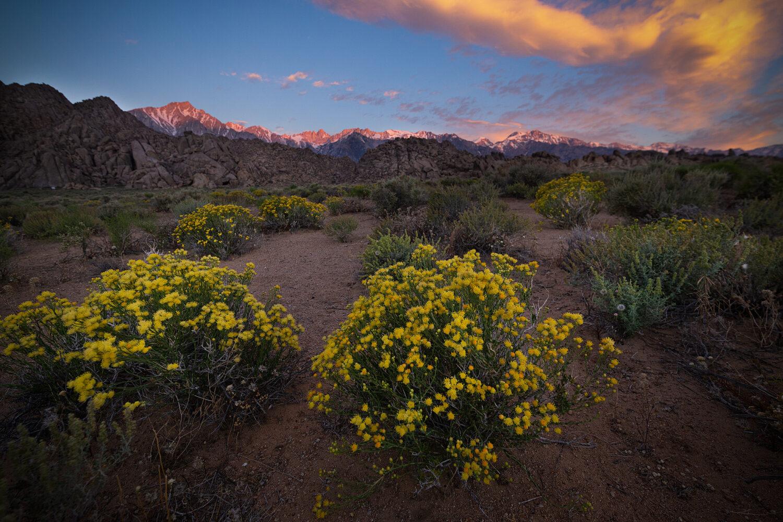 california 395 corridor alabama hills