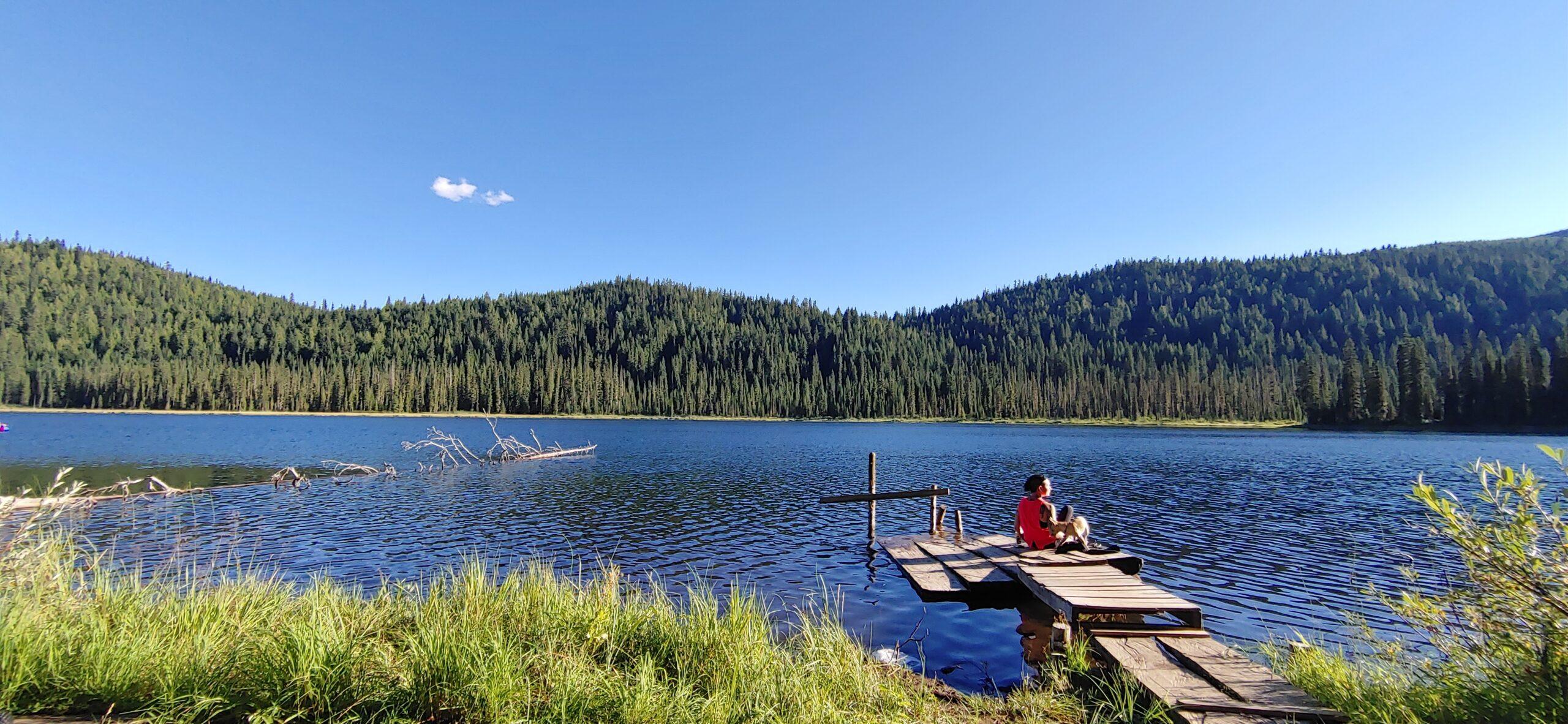 lake in the okanagan