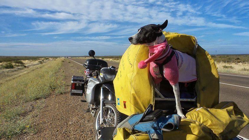 black hill moto film fest 1